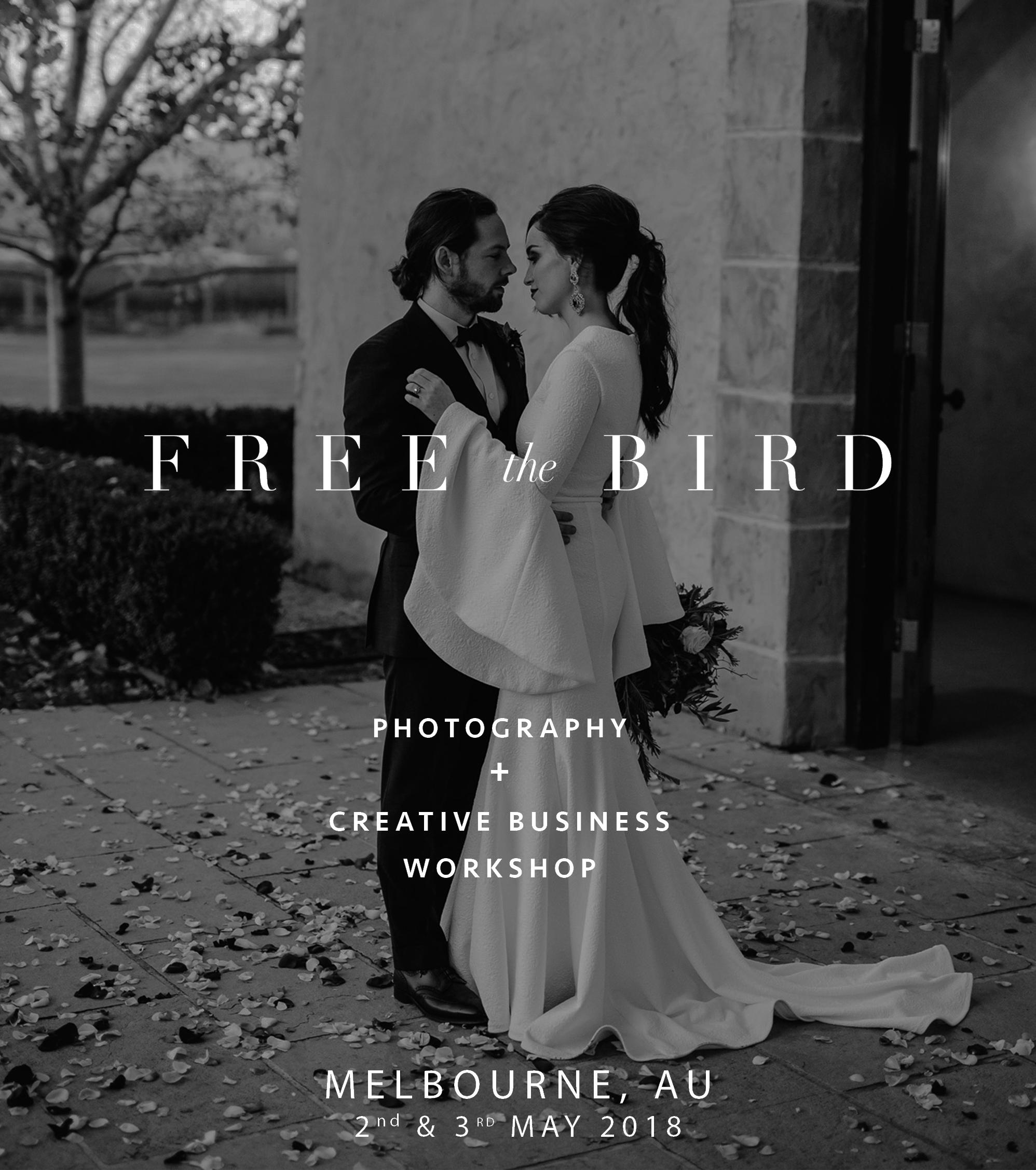 free the bird workshop